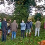 Martin explains hedge-laying in front of the section to be laid